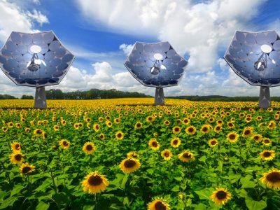 技术与艺术的结晶:向日葵太阳能电池板( Sunflower )能够为偏远地区的电力和热能提供带来便利
